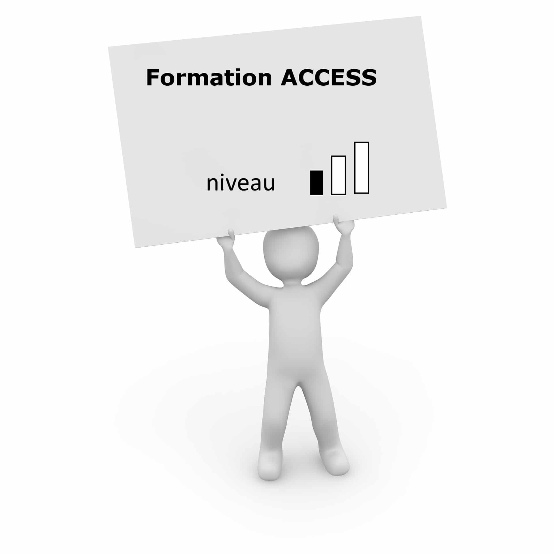 formation access niveau 1