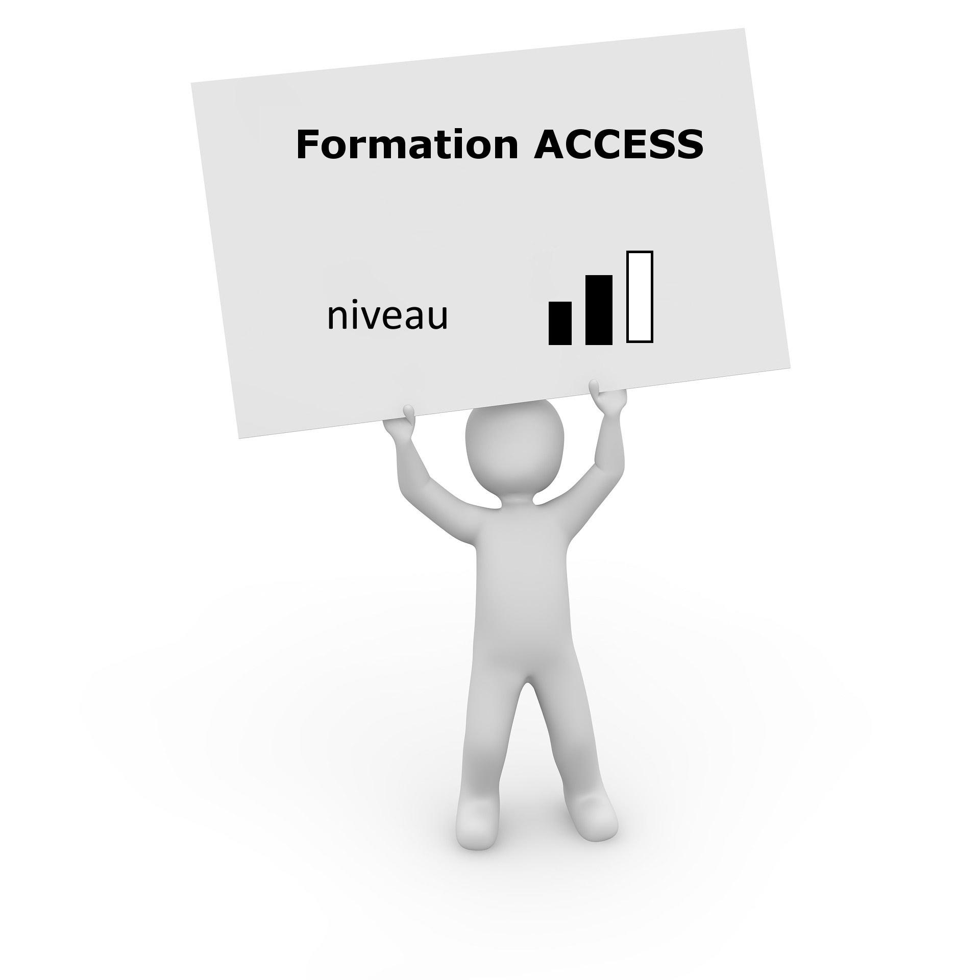 formation access niveau2