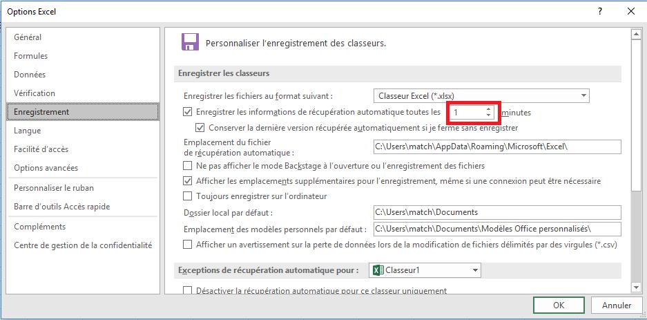 option enregistrement word exce